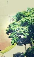 圖片描述:徐佑德〈陽光在鐘響燦爛的日子〉